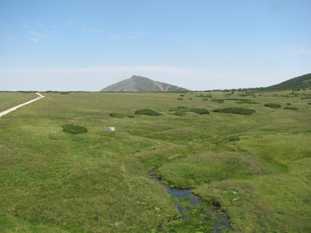Pohled na sněžku